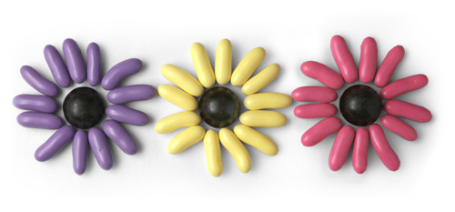 Licorice Candy Flowers