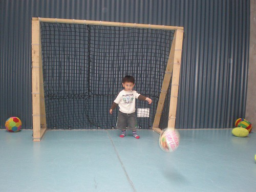 Budding Goalie