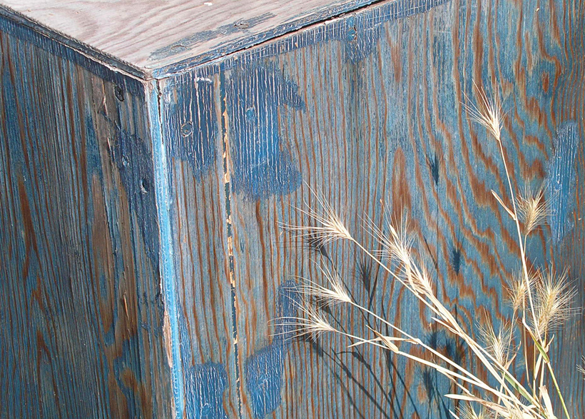 Blue Box with Wheat 2