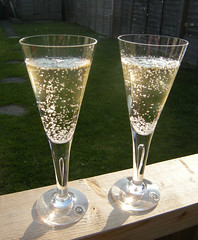 Celebrating life! (eyeseenicee) Tags: kitchen glass crystal drink champagne drinking kitchenalia dartington thrifted thift