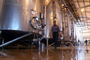 Nuevo control electrónico del movimiento de vinos y mostos