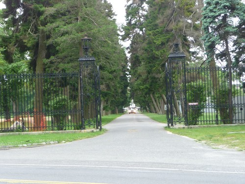 Looking up the Driveway towards the Mansion