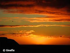 Titahi Bay Sunset (tinefis) Tags: sunset newzealand bay nz wellington kiwi aotearoa nzl solnedgång titahibay titahi wgtn nzimages solnedgng newzealandimages photosofnewzealand imagesofnewzealand