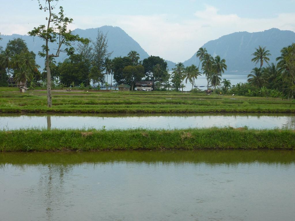 Sumatra-Lac Maninjau (97)