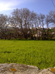 LAND NEAR THE RIVER (dimitra_milaiou) Tags: sky tree green nature colors river landscape island greek spring europe village view hellas greece chora andros cyclades dimitra  horaandros    paraporti  androslivadia milaiou