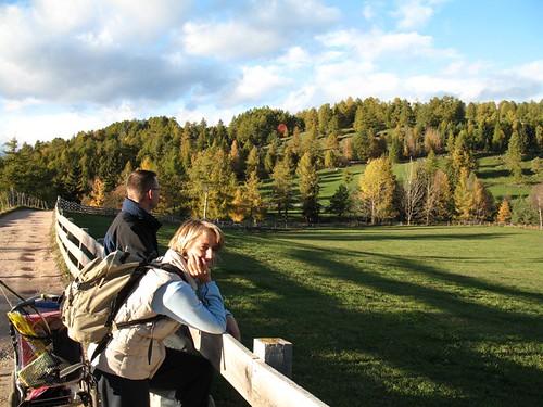 Die gemütlichen Forstwege sind von atemberaubenden Ausblicken auf die farbenprächtigen Lärchenwälder begleitet