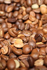 Beans! (Lpaw) Tags: nottingham brown coffee field beans dof bean depthoffield starbucks depth coffeebean coffeebeans challengeyouwinner thechallengefactory challengefactoryunanimouswinner a3bchallegewinner