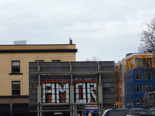 AMOR not FIMOR