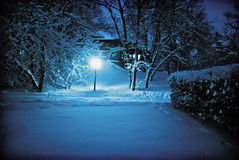 Snowy Night in St. Paul, MN (Dan Anderson.) Tags: blue winter snow cold night streetlight dananderson