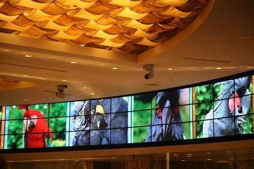 iMagine casino