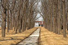 Long Way Home (FotoEdge) Tags: homes classic home forest missouri mansion treelined homeplace jacksoncounty longdrive countryplace longwayhome fotoedge treelineddrive