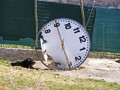 in attesa... (Lollo [neon]) Tags: cane orologio stranezze creativit oniricamente trashbitreloaded