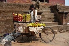 The Fruit Man - Bhaktapur, Nepal (meckleychina) Tags: travel nepal bike bicycle fruit asia working bhaktapur fruitman