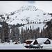 Big Cottonwood Snow