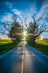 Country Road to Heaven (crashmattb) Tags: road old trees clouds rural countryside skies explore april sunburst arkansas ozarks epic heavenly 2009 wareagle canoneosdigitalrebelxti anawesomeshot sigma1770mmf2845dc