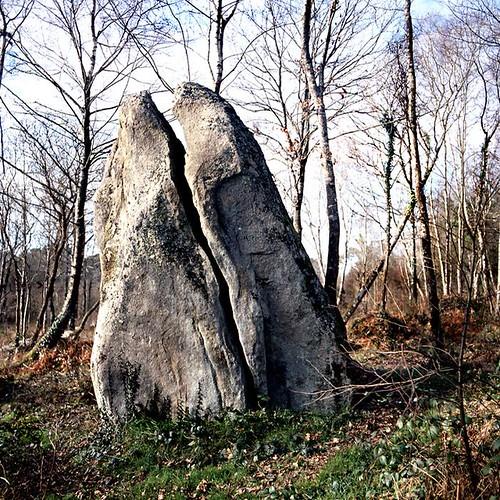 dolmen fendu Plouhinec (kerfoucher) Morbihan