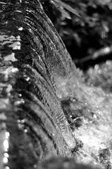 Chute (riquet69) Tags: blackandwhite bw nikon eau noiretblanc chute d90 oyonnax