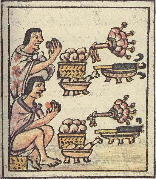 banquete azteca-códice florentino