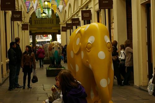 Elefant Parade III