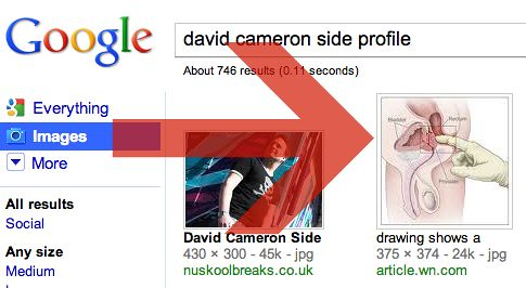 david cameron side profile on Google