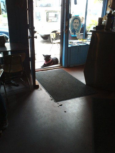 Tima guarding the door to YJ's