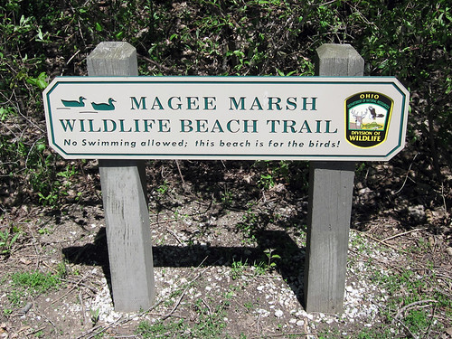 Magee Marsh Wildlife Beach Trail