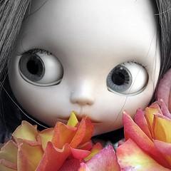 De paseo entre flores