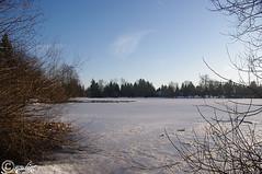 Como Lake, Coquitlam (NyteMagic) Tags: snow ice coquitlam comolake