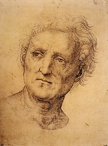 1504  Raphael    Head of a middle-aged man  Black chalk  25,4x18,9 cm  ltBibliothиque municipale