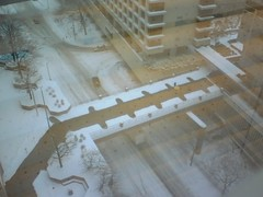 snow & crap