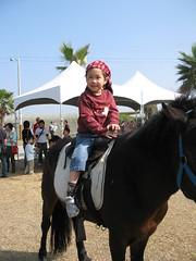 20090130-zozo騎馬