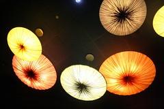 Glowing Mushrooms (Astro79) Tags: usa holiday canon mushrooms lights orlando epcot florida disney disneyworld glowing themepark pfogold pfosilver eos1000d