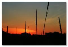 I am me. (Dolly MJ) Tags: sunset sky sun color malaysia redsky sabah kk beautifulsunset colorfulclouds landbelowthewind kotakinabalusunset sabahsunset borneosunset beautifullandsscape beautifulkk