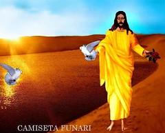 jesus cristo rosa pombas deserto