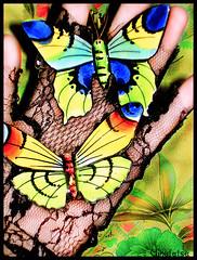 Butterflies (Naitoyuki4444710) Tags: pink wallpaper paris anime art japan illustration lune logo de photography petals rainbow spain asia kei pics web banner goth manga super blogger hyde junior oriental visual vamps larme larcenciel suju heechul naitoyuki ainafetse