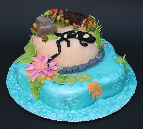 Salamander Pond Cake