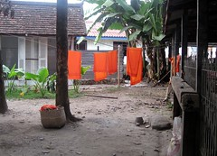 Monk's robes (aptronym) Tags: orange temple laundry monks laos luangprabang wats buddhistmonks monksrobes laomonks laowats luangprabangtemples luangprabangwats vathosianvoravihane wathosian