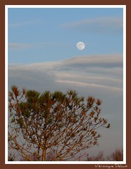 Lever de lune kenian-camarguais (Vronique Delaux On/Off) Tags: moon nature lune montpellier iq magicmoment camargue smrgsbord photographe photon potofgold inspiredbylove kartpostal golddragon abigfave aplusphoto overtheexcellence provencectedazur panasonicfz18 piochbadet naturespotofgold camarguefrance vosplusbellesphotos vroniquedelaux alpesprovencectedazur cratitudesnolimits vroniquedelaux delaux photographemontpellier