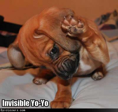 Invisible Yo-Yo - LOLDogs