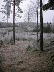 081226_014 (annakajsa) Tags: sweden 2008 0812 beateberg