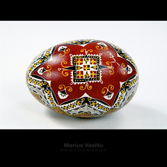 easter egg - Lucia Condrea Museum (Bazalai) Tags: art motif museum composition painting easter design artwork symbol artistic drawing geometry decorative patterns painted traditional egg craft ornament ou romania eggs wax geometrical colourful ostern ornamental technique coloured pske romanian semanasanta eggshell decorated roumanie pasqua motives pques hsvt ovoid velikonoce simbol uskrs bucovina ressurection rumnien bukowina desen    romnesc pictat mariusvasiliu terradesign bazalai bucovine bucovinean pati pate   nviere ou art pashkt oudepati ncondeiat nchistrit compoziie tehnic meteug tradiie chii cear