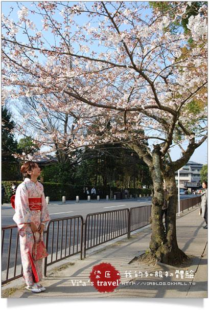 【京都賞櫻旅】京都旅遊~高台寺染匠和服體驗篇高台寺染匠和服體驗29