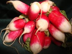 Radish (biezo57) Tags: red food radishes radish