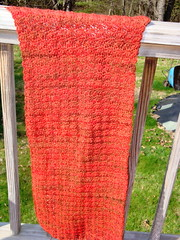 Crocus wrap as of 4/29/09