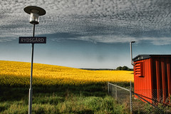 Somewhere in Sweden (avirus) Tags: blue red sky cloud white green field grass europe sweden shed canola