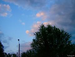 Bluebird Skies...