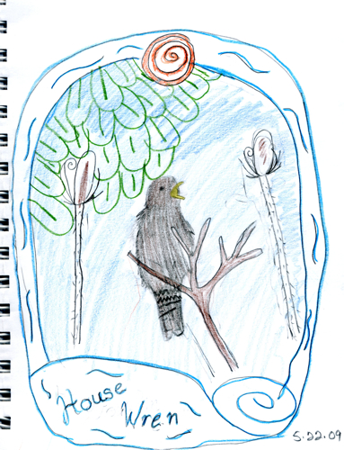House Wren--by Zippy (age 9)