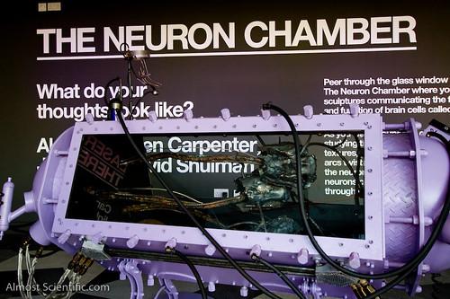 AlmostScientific- The Neuron Chamber