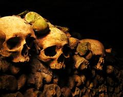 We Three (stephanie.keating) Tags: paris france skulls death creepy spooky bones catacombs parisfrance fave5 s5d10