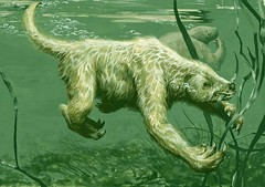 WaterSloth LowRes by Bill Parsons